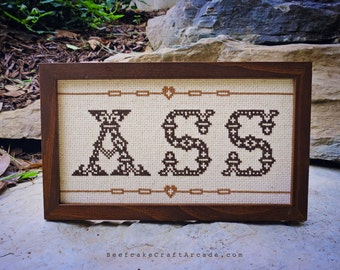 ASS - framed cross stitch