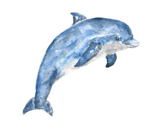 Animal art, watercolor animals, watercolor dolphin, beach print, dolphin print, beach art, beach painting, ocean nursery art, 10X8