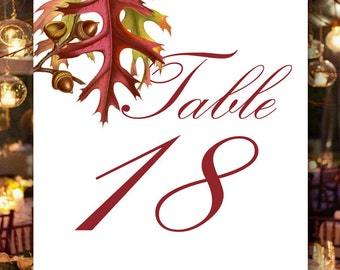 Fall Wedding Table Numbers, Text Color Options, Event Table Numbers, Bridal Shower, Wedding Place Cards by No. 9