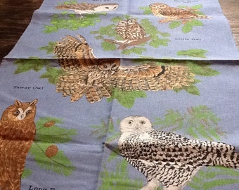 Towel Hand Owls Collectible