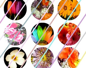 "Mixed Flowers 1"" Bottle Cap Image 4x6 Digital Collage Sheet 2 Instant Download"