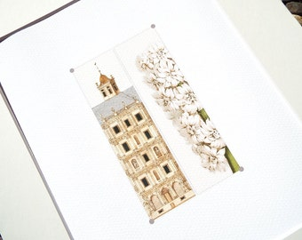 Neo Classical Building Detail and White Hyacynth Botanical Study Archival Print