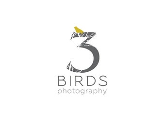 Photography Logo Design Package-Professional Custom Logo Design with Watermark
