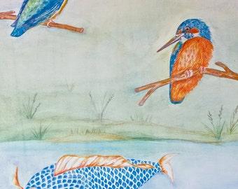 Koi Carp with Two Kingfishers near Pond