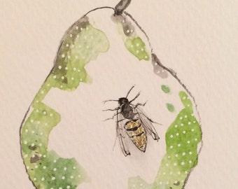 """Daily Illustration # 27/100 """"Green Pear and Wasp"""" Original Drawing"""