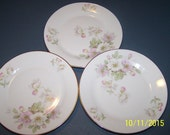 Set of Three Lovely Sandwich Plates, Hutschenreuther Bavaria Pasco