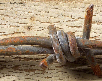 Well Aged, Western Photograph, Distressed Barb Wire Photo, Wall Art, Home Decor, Brown, Rust, Tan, Macro Photography, Still Life Photo