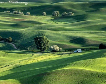 Landscape Photograph with Barn, Green Farmland Photo, Wall Art, Print, Home Decor, Fine Art, Office Art, Rolling Hills Art, Palouse Photo