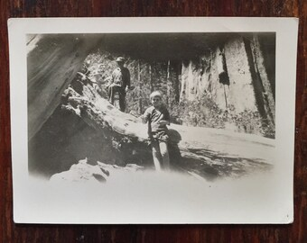 Original Antique Photograph The Boy in the Forest