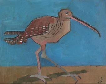 Long Beaked Shorebird