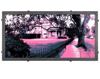New Orleans Framed Silkscreen Print, Bendy Sidewalk in Garden District, LA