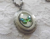 Butterfly Locket Necklace Memory Keepsake Pendant Silver Photo Picture Cameo