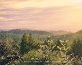 Oregon Photography | Pink | Forest | Trees | Woods | Peaceful | Sunrise | Landscape | Mountain Photo