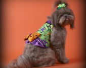HALLOWEEN:  Witch Hats DOG HARNESS