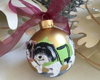 Pet Portrait on Ornament