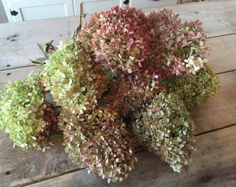 Large Dried Hydrangea Bouquet / Large Bunch Hydrangea's / Naturally Preserved Hydrangea's / Dried Floral's / Limelight Hydrangea's