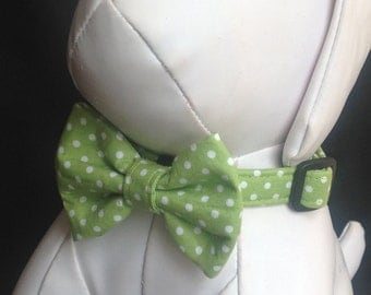 Dog Collar Bow Tie Set - Green And White Polka Dots - Size XS, S, M, L, XL