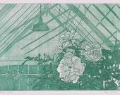 Original Etching of Glass House - Etching Print of Roses - Green House Print - Roses Fine Art Print -  Glass House Etching Print