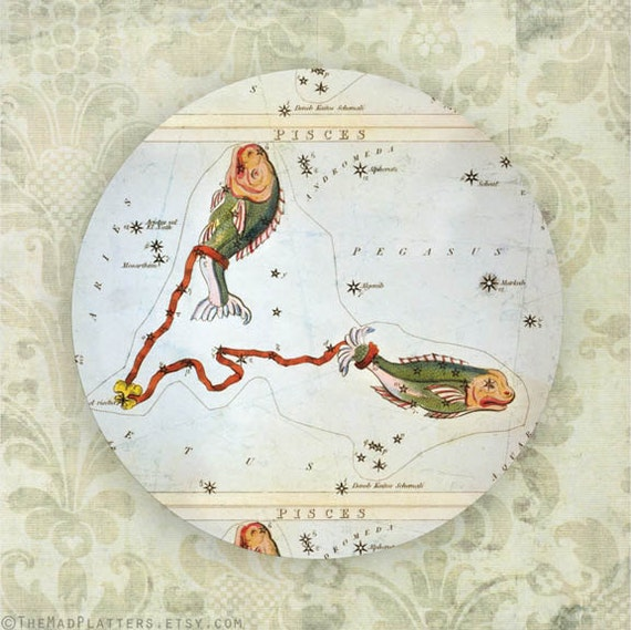 Pisces zodiac, constellation melamine plate