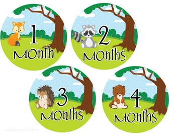 Baby Monthly Stickers Milestone Stickers Baby Month Stickers Baby Shower Gift