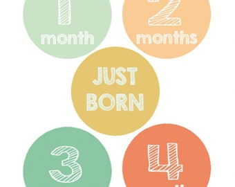 Baby Monthly  Milestone  Iron On Heat Transfers - Modern Chalkboard Design 15 pc. set