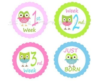 Baby OWLS  Monthly Iron On Heat Transfers N111 - 1-12 Months Plus Just Born and   1-3 weeks