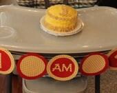 Cheerio Themed High Chair Birthday Banner