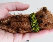 Jack a sweet little scruffy mohair teddy bear