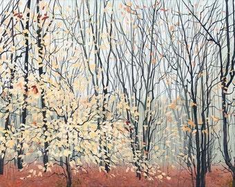 Panoramic-Winter Beech Woods