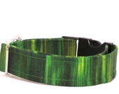 Green Dog Collar,  Dog Collar, FREE SHIPPING, adjustable dog collar
