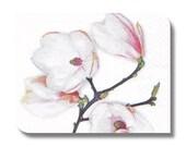 Floral paper napkin serviette for decoupage (cocktail)  x 1 White Magnolia No 1293