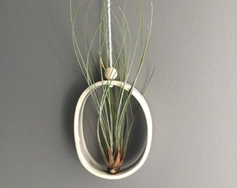 Medium Oval or Round Airplant Cradle Sling Hanging Planter Display for Air Plant READY TO SHIP