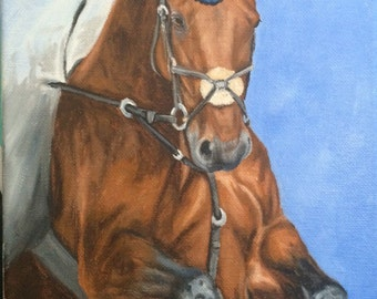 Original horse oil painting Nicolae Equine Art Hunter Jumper Nicole Smith Artist 8x10