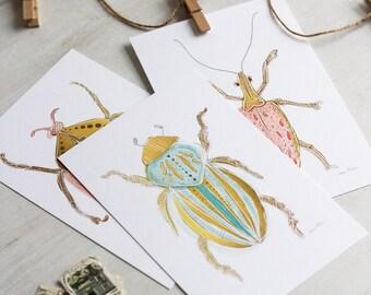 Beetle Bug Art Print Postcards - Set of Five