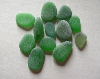 12 medium emerald green kelly green genuine sea glass  beach glass