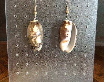 Earrings shell (No. OR6)