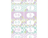 Rectangle Closet Clothes Dividers in Purple, Mint and Lime Green 6 Piece Gift Set for Baby Girls Nursery RCD029