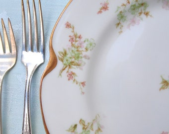 Antique Haviland & Co. Limoges Dinner Plate | Floral Green and Pink with Gold | Circa 1890's to 1930 | Limoges France