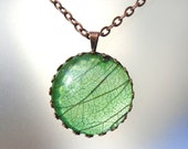 Real Skeleton Leaf Green Glass Round Copper Woodland Pendant Necklace  e