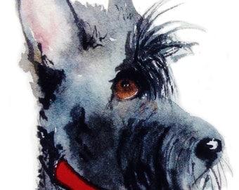 Scottish Terrier Dog  Art Print Scottie Dog #145