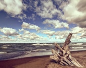 Presque Isle beach driftwood, HDR photograph, Blue and tan, Glossy fine photography print, Driftwood