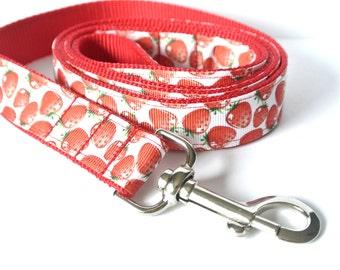 "Strawberry Dog Leash - 1"" Summer Red Strawberries Lead"