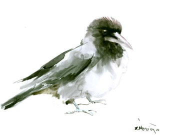 Hooded Crow art original watercolor painting, 12 x 9 in, crow art, crow painting, crow gift, raven