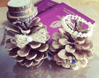 Mr & Mrs Pine cone Cake Topper / Rustic Wedding Cake Topper