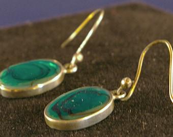 Green Abalone Drop Earrings
