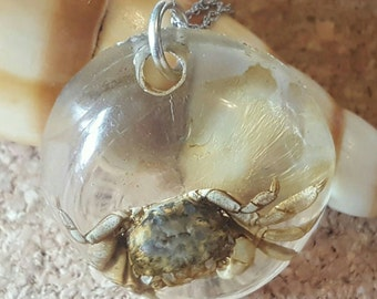 "Real Crab set in Clear Resin on 18"" Sterling Silver Chain (st - 1566)"