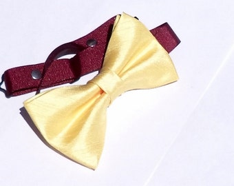 Pale gold shantung bow tie