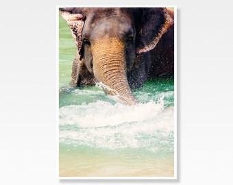 Elephant Print, Animal Photography, Wildlife Photograph, Asian Elephant Photo, Elephant Wall Art, Elephant Photograph, Animal Print Decor