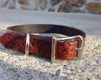 """3/4"""" old style leather dog collar"""