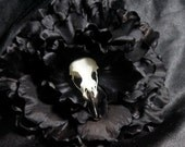 Crowmancer the Rotten Rose